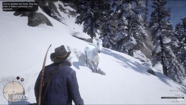 red dead redemption 2 белая арабская лошадь