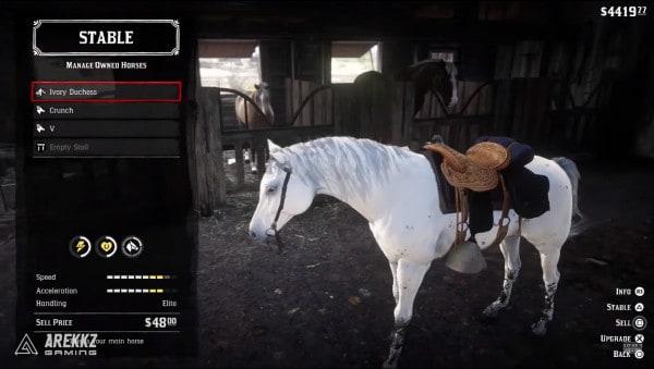 red dead redemption 2 статы арабская лошадь